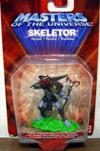 skeletor(mini)t.jpg